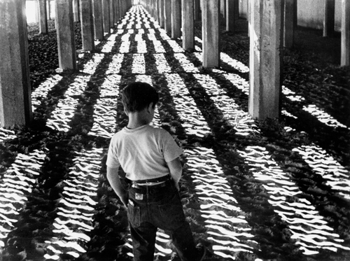Little Fugitive (1953) | Film Capsule
