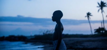 moonlight-named-best-picture-of-2016-by-the-national-society-of-film-critics-520x245.jpg